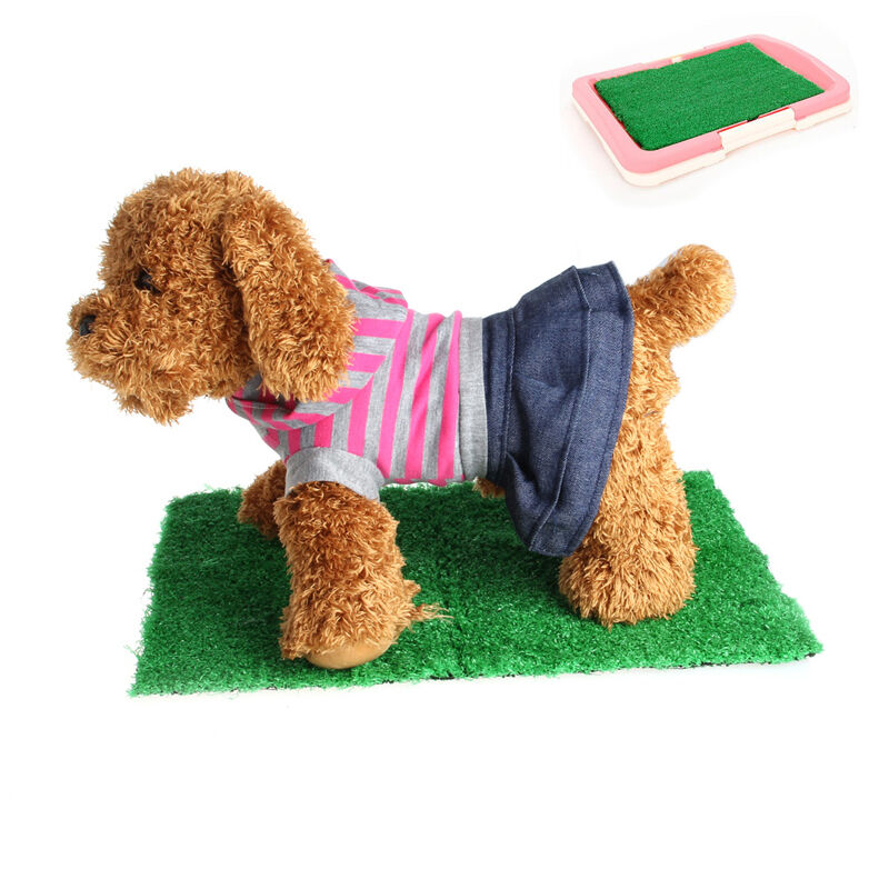 Synthetic Grass For Dog Training