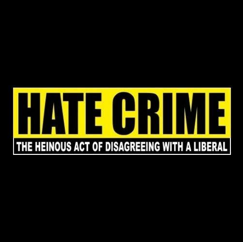 Funny hate crime anti liberal bumper sticker obama hillary democrat gop decal ebay