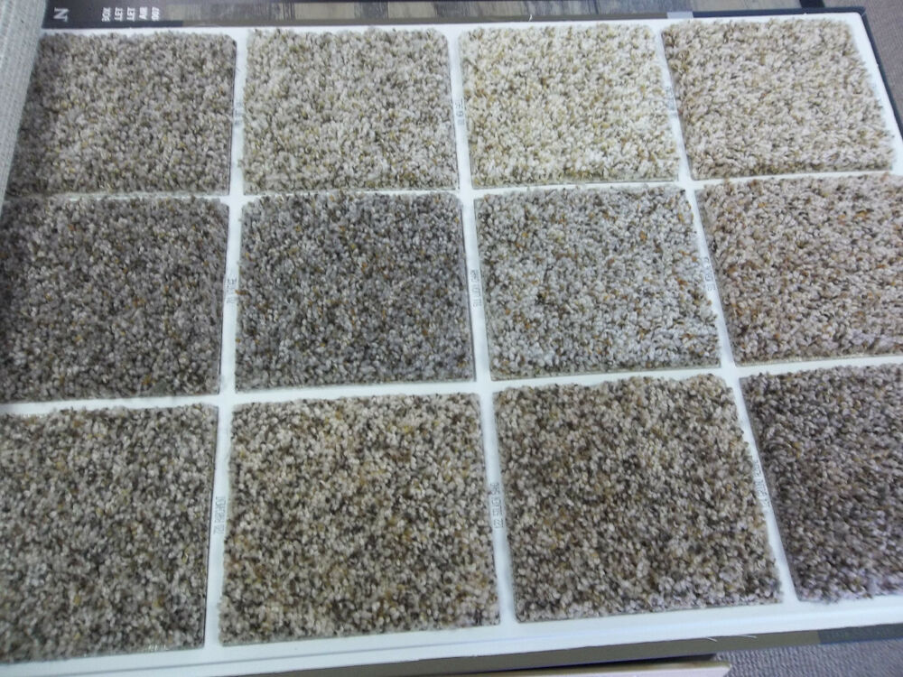 Wall to wall carpet stain resistant carpet we can ship for Wall to wall carpeting