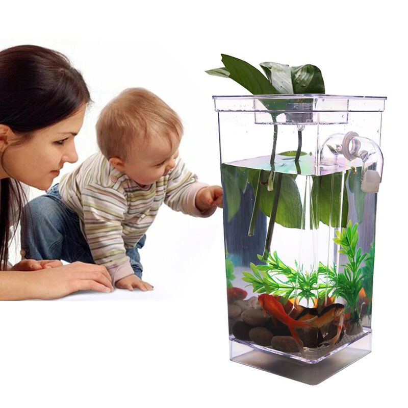 Fish tank aquarium self cleaning building cleaning for Fresh water tank cleaning fish