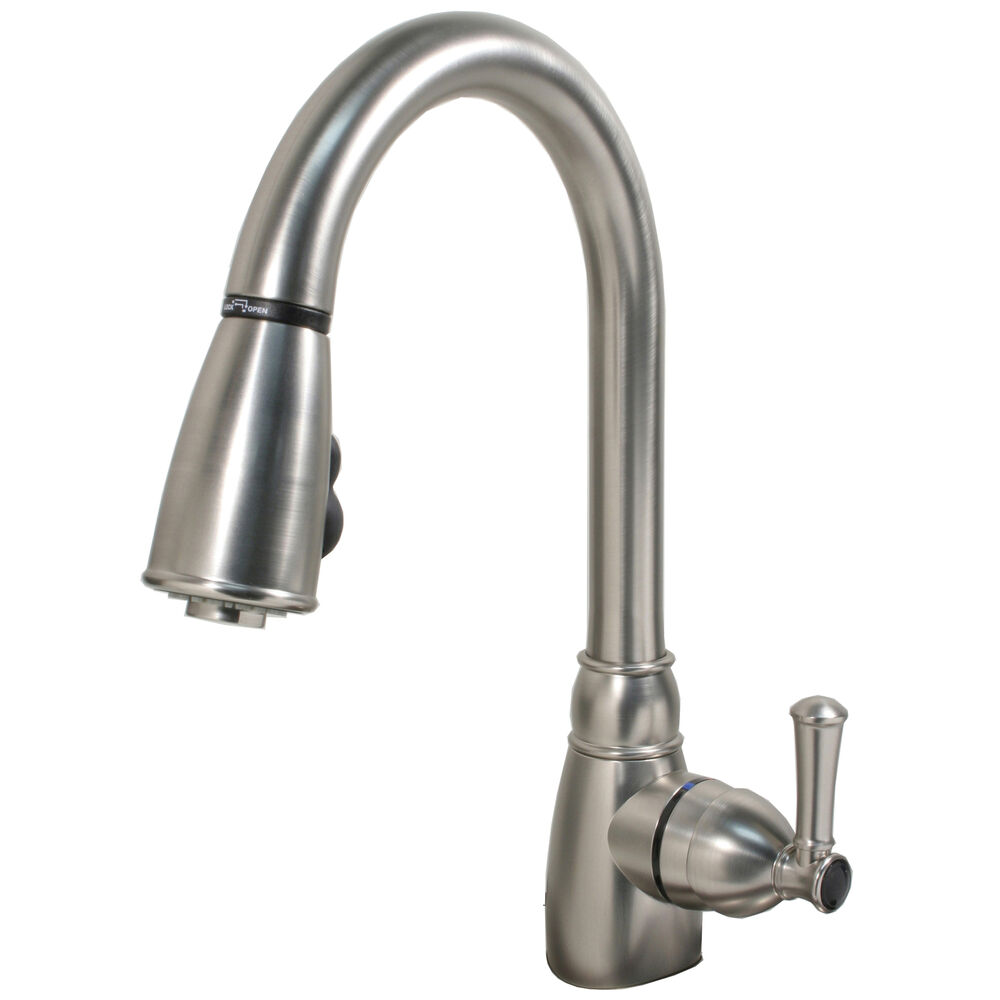 "Kitchen Facets: Single-Handle Non-Metallic 8"" Kitchen Faucet With Pull"
