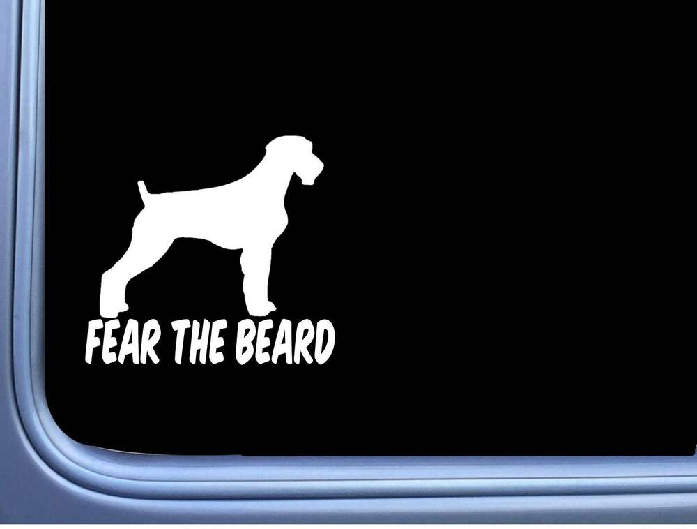 852d9029c1b6 Details about Fear The Beard German Wirehaired Pointer M341 6 inch Sticker  Decal dog wirehair
