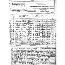 1890 Civil War census Adams County, Ohio genealogy
