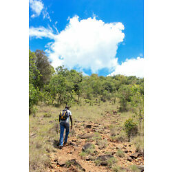 Kyпить Moderate Hiking and Trekking in Kenya (9 Days) (Price for 2 Travellers) на еВаy.соm