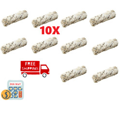 10 Pack White Sage smudge Herb Cleansing Negativity Removal 4 to 5 inches