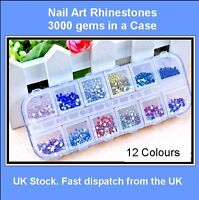 3000 (2MM) NAIL ART GEMS IN CASE RHINESTONES ROUND DIAMANTE 12 COLOURS