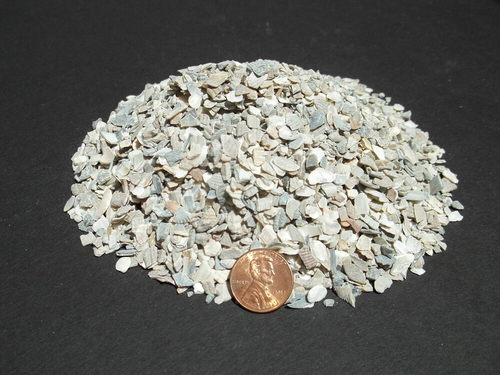 Crushed oyster shell medium dyna rock cactus cacti for Crushed oyster shells for landscaping