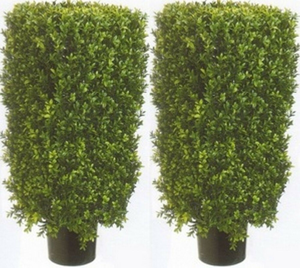 2 artificial 30 boxwood rectangle topiary bush tree in for Outside plants and shrubs