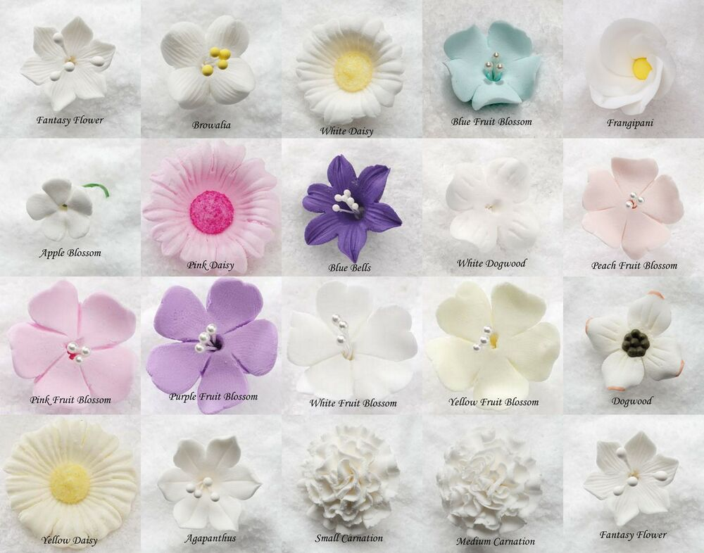 List Of Edible Flowers For Cake Decorating