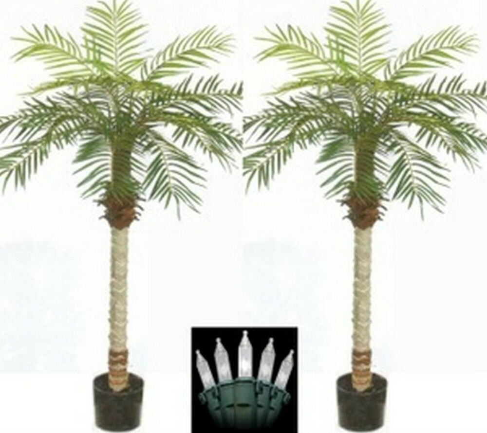 Two 5 Foot Artificial Phoenix Palm Trees Pot Holiday