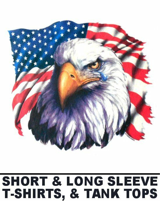 States United flag with eagle forecasting dress in spring in 2019
