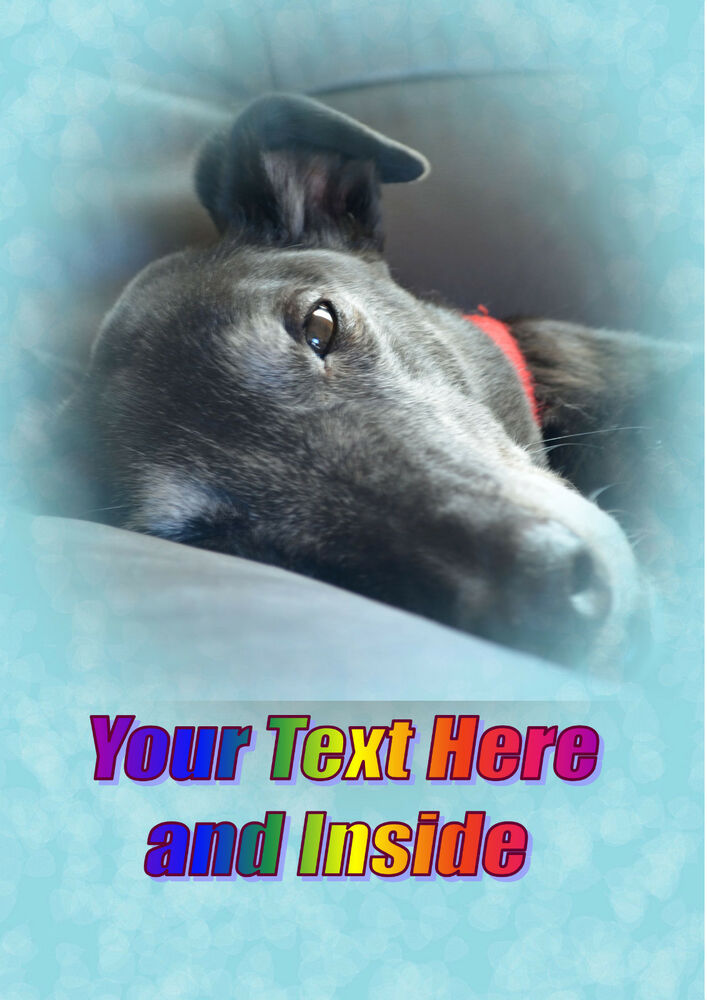 Find great deals on eBay for greyhound cards. Shop with confidence.