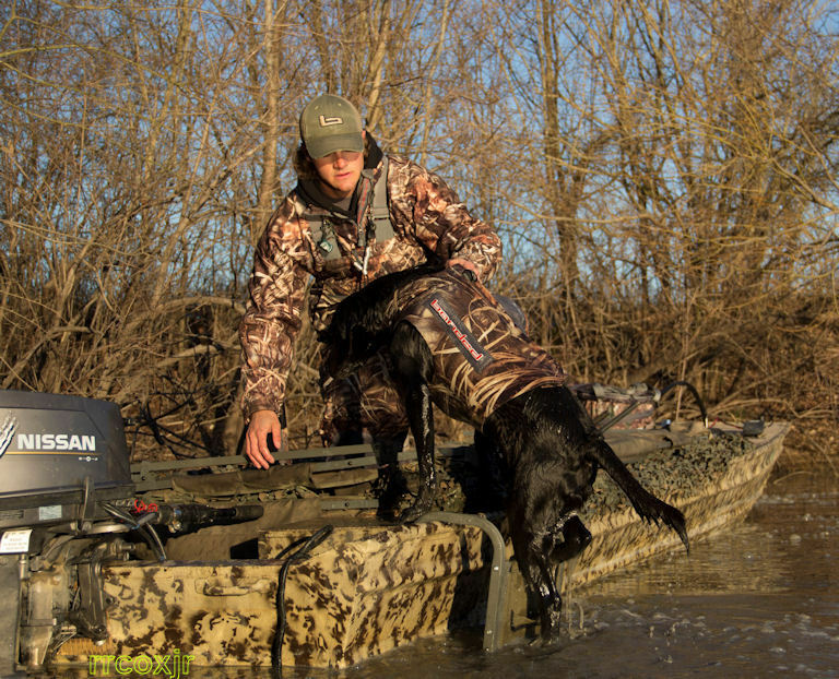 Banded Dog Tree Stand Banded Dog Ramp Boat Marsh Retriever