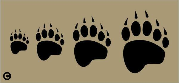 bear footprints template - primitive stencil bear paw prints rustic cabin wilderness