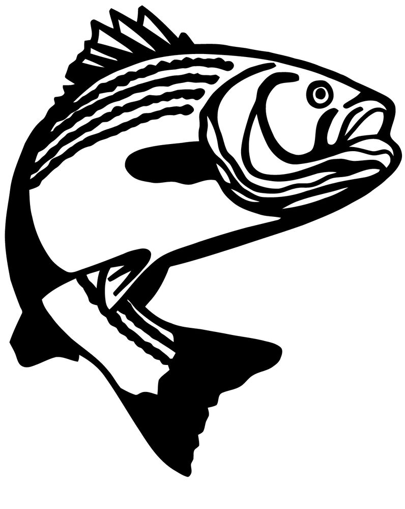 Details about a fishermans fish decal or sticker many colors to choose from vinyl cut