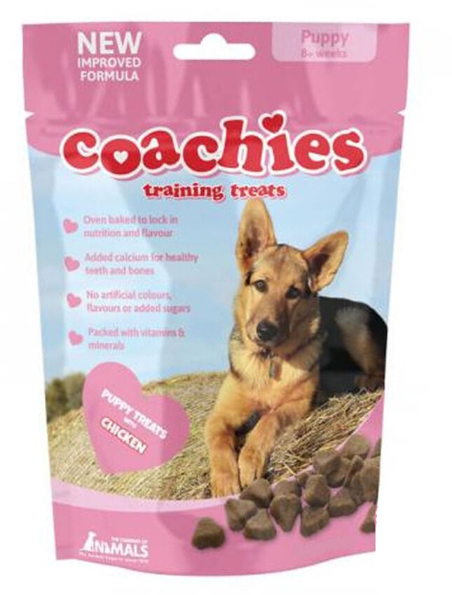 Best Natural Training Treats For Puppies