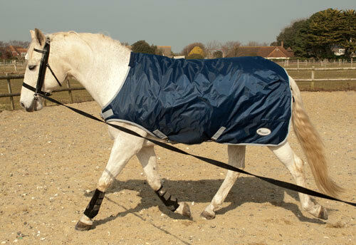 Rhinegold Horse Walker Lunge Rug Exercise Sheet