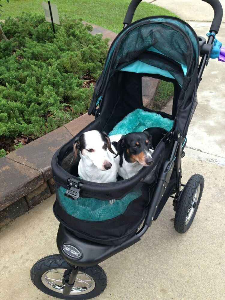 Pet Gear Stroller Jog Walk Skyline Nv No Zip Weather