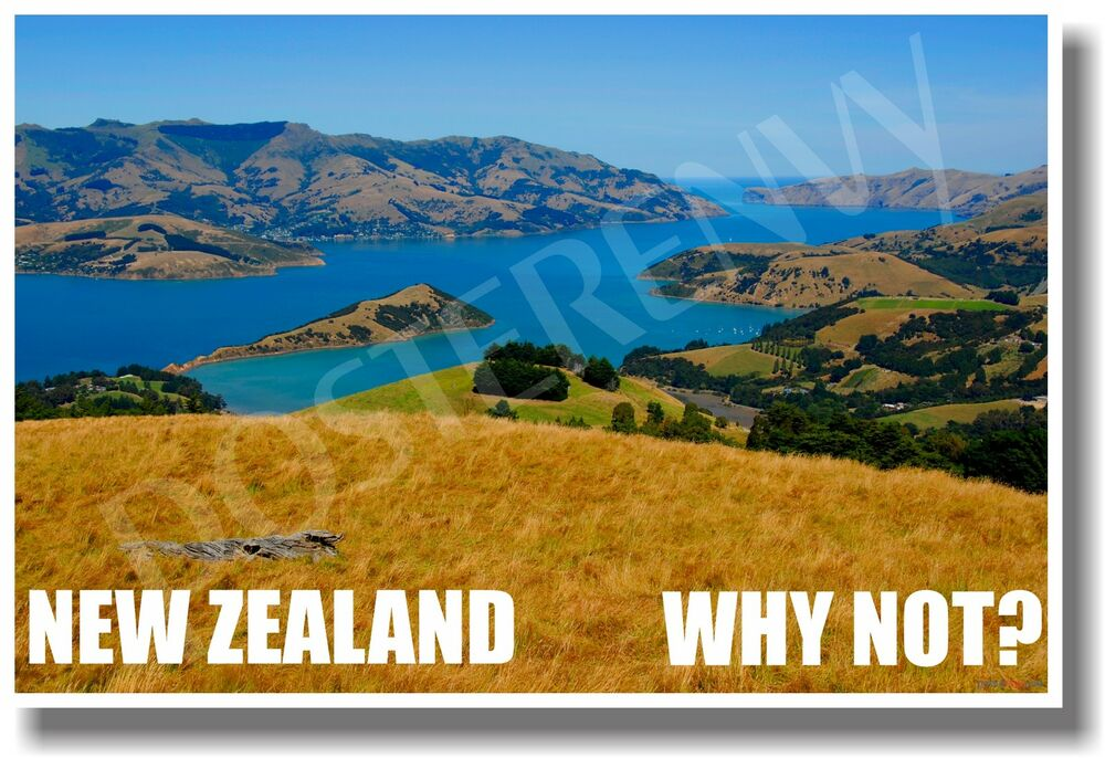 new zealand why not new world travel poster ebay. Black Bedroom Furniture Sets. Home Design Ideas
