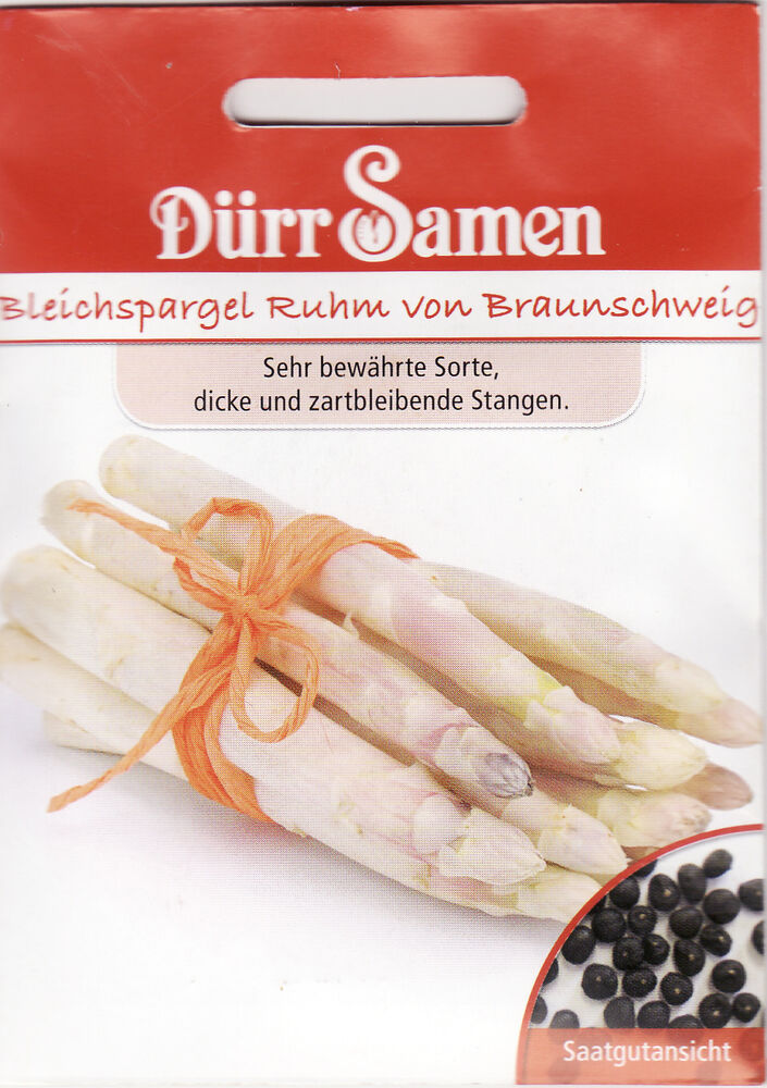 spargel bleichspargel ruhm von brau asparagus officinalis. Black Bedroom Furniture Sets. Home Design Ideas