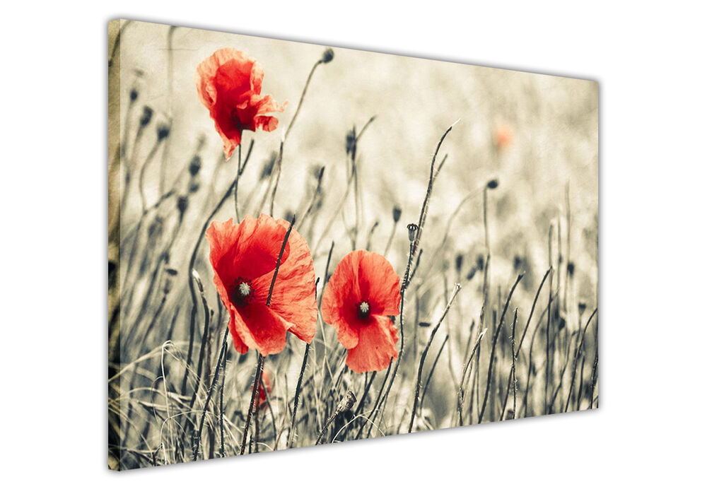 sepia canvas wall art pictures black and white flower prints home decoration ebay. Black Bedroom Furniture Sets. Home Design Ideas