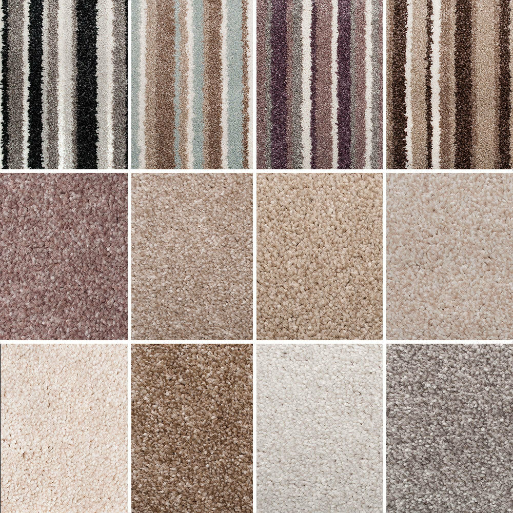 Stainsafe more noble saxony carpet quality thick shag for What is the best quality carpet