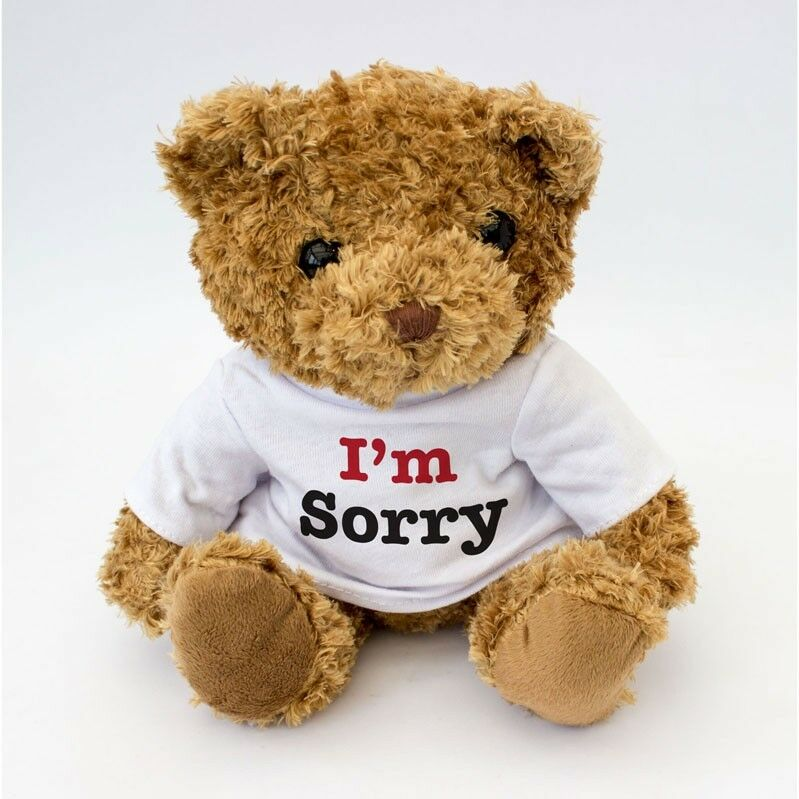 NEW - I'm Sorry Message Cute Teddy Bear - Gift To Say ...