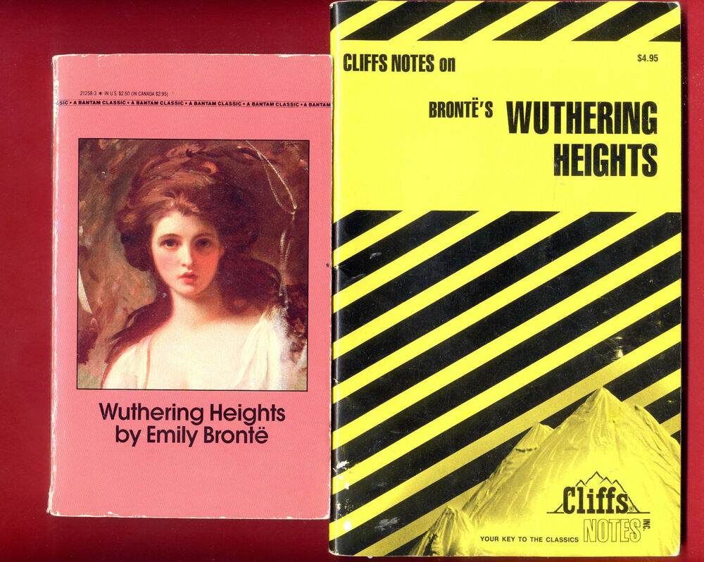 a novel full of emotions and activity wuthering heights by emily bronte Emily brontë and the novel wuthering heights the novels were set in castles or large houses full of although emily brontë wrote only the one novel.