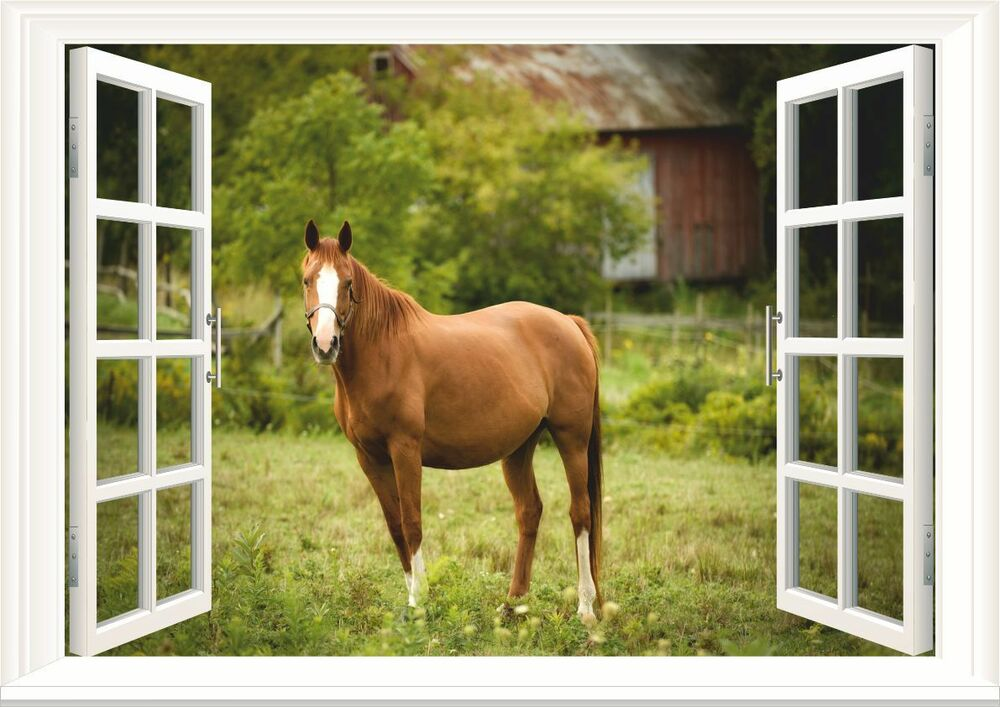Horse paddock 3d window wall art sticker decal size a2 ebay for Window horses