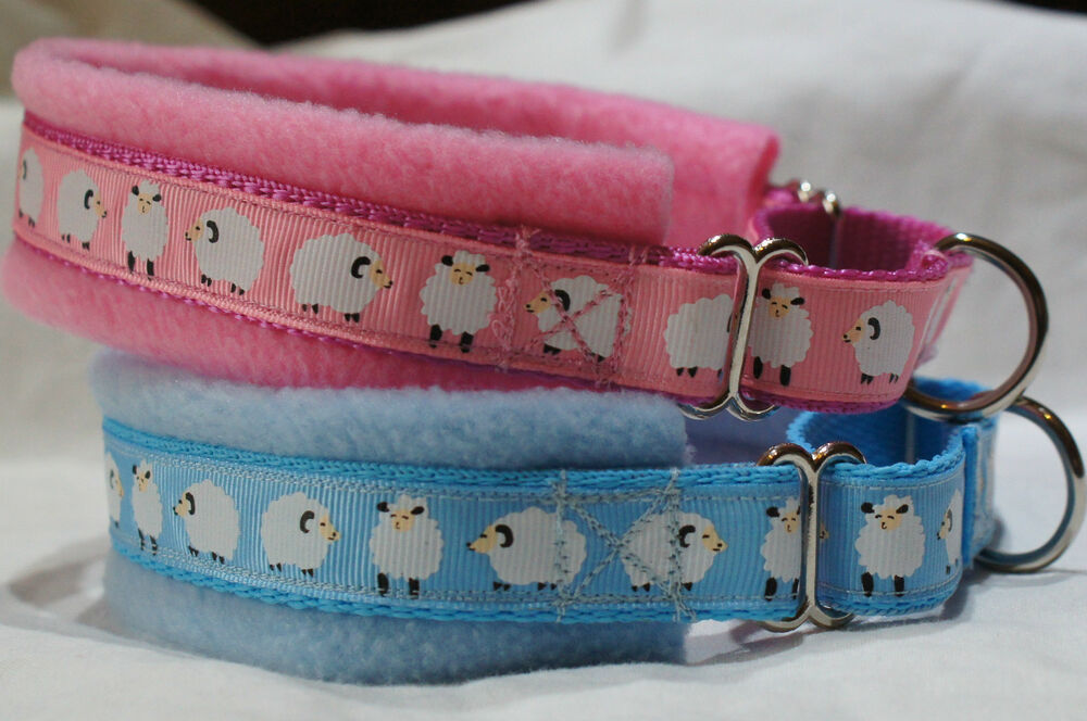 Personalised Dog Collars Ebay