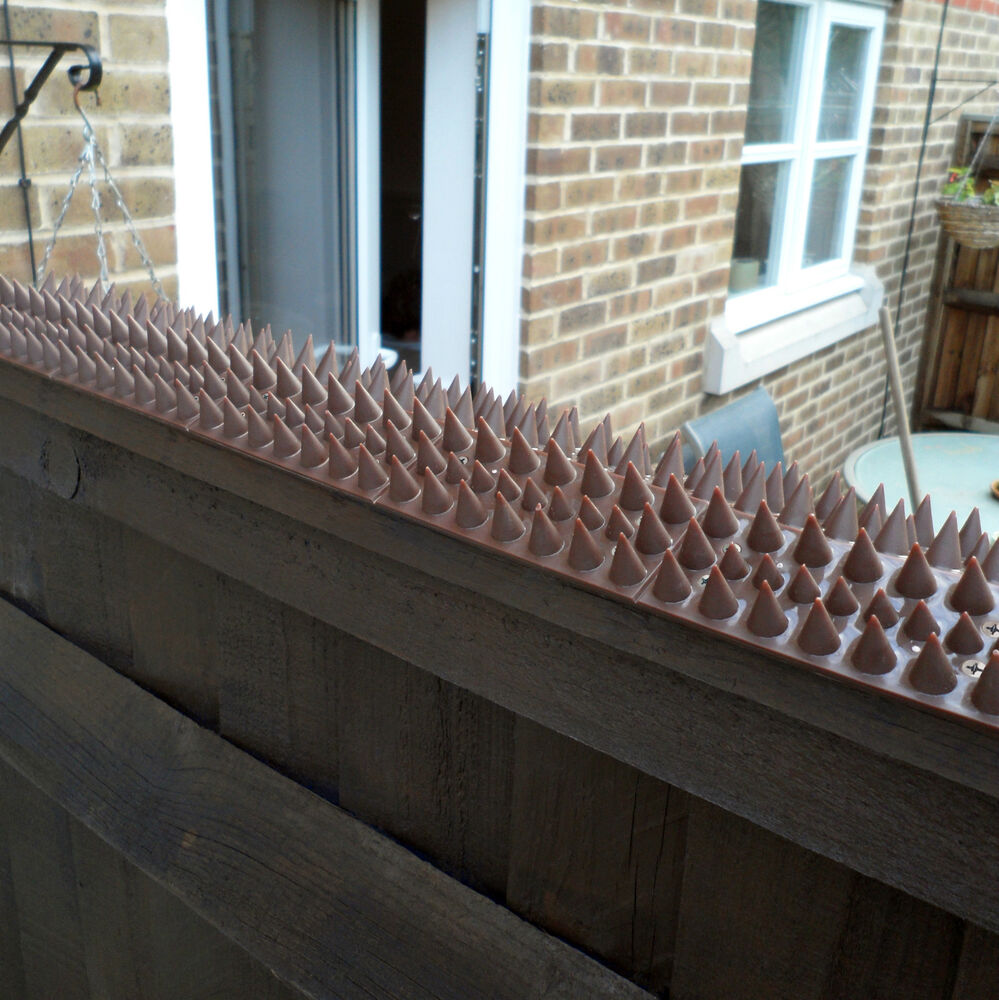 10 x fence wall spikes brown birds cat repellent intruder deterrent anti climb ebay - How to keep intruders out of your garden ...