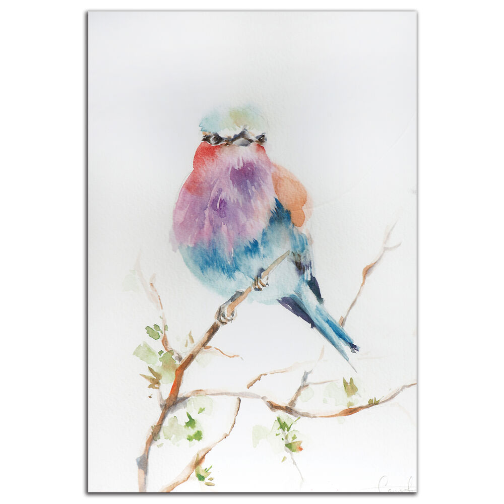 colorful bird wall art modern watercolor rainbow birds