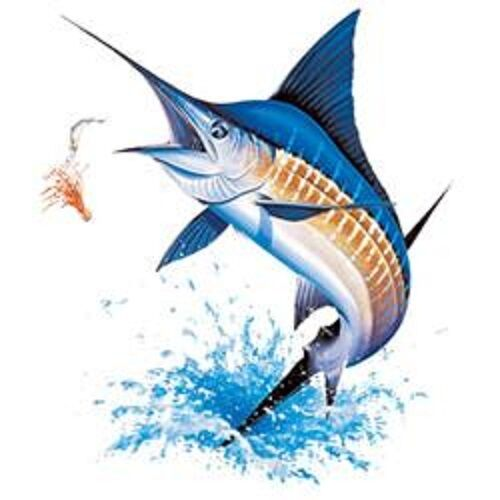 Blue Marlin Fishing Heat Press Transfer Print For T Shirt