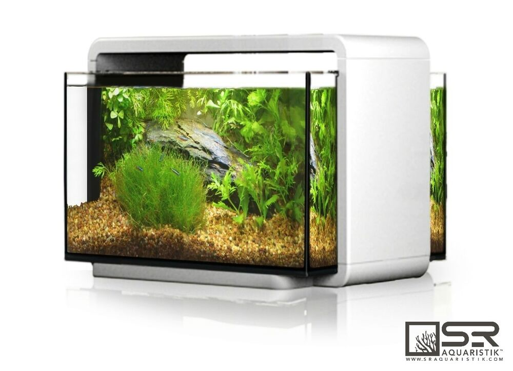 nano desktop aquarium kit 6 6 gallon all glass led lighting sr aquaristik ebay. Black Bedroom Furniture Sets. Home Design Ideas