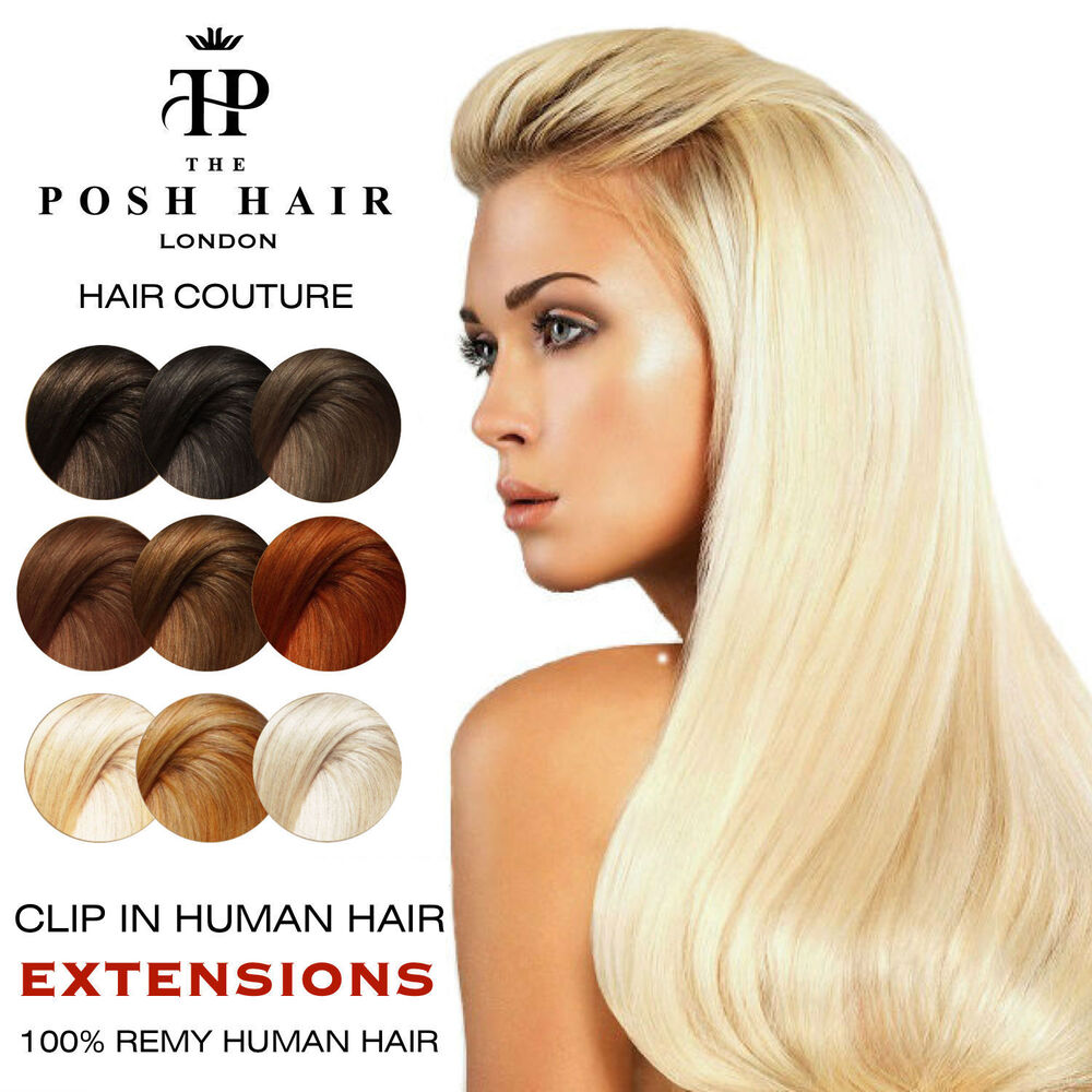 Posh clip in human hair extensions remy full headthe posh hair posh clip in human hair extensions remy full headthe posh hair free bonus ebay pmusecretfo Images