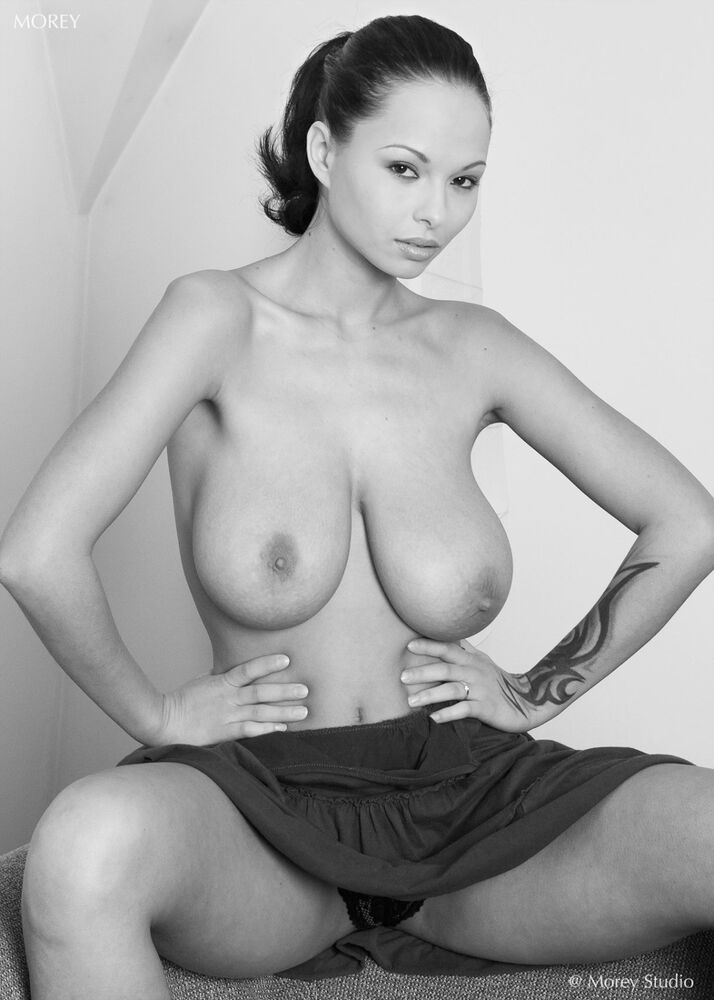 Fine Art Black & White Nude, signed 8.5x11 print by Craig ...