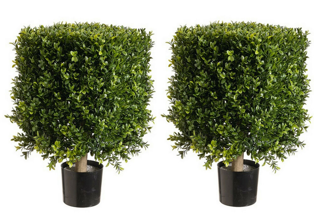 2 Artificial 21 Quot H X 12 Quot Square Boxwood Topiary Uv Outdoor
