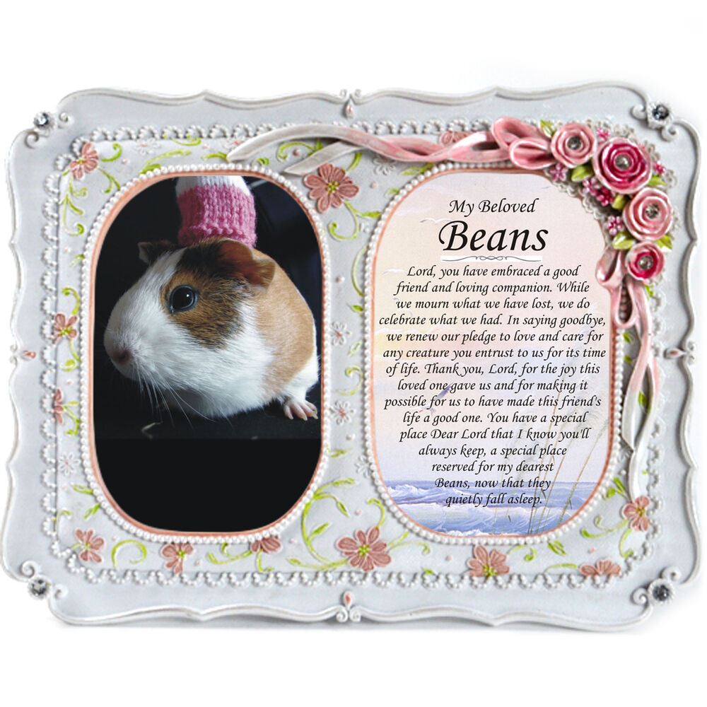 Guinea Pig Memorial Double Gift Frame - Photo, Plaque, In Loving ...