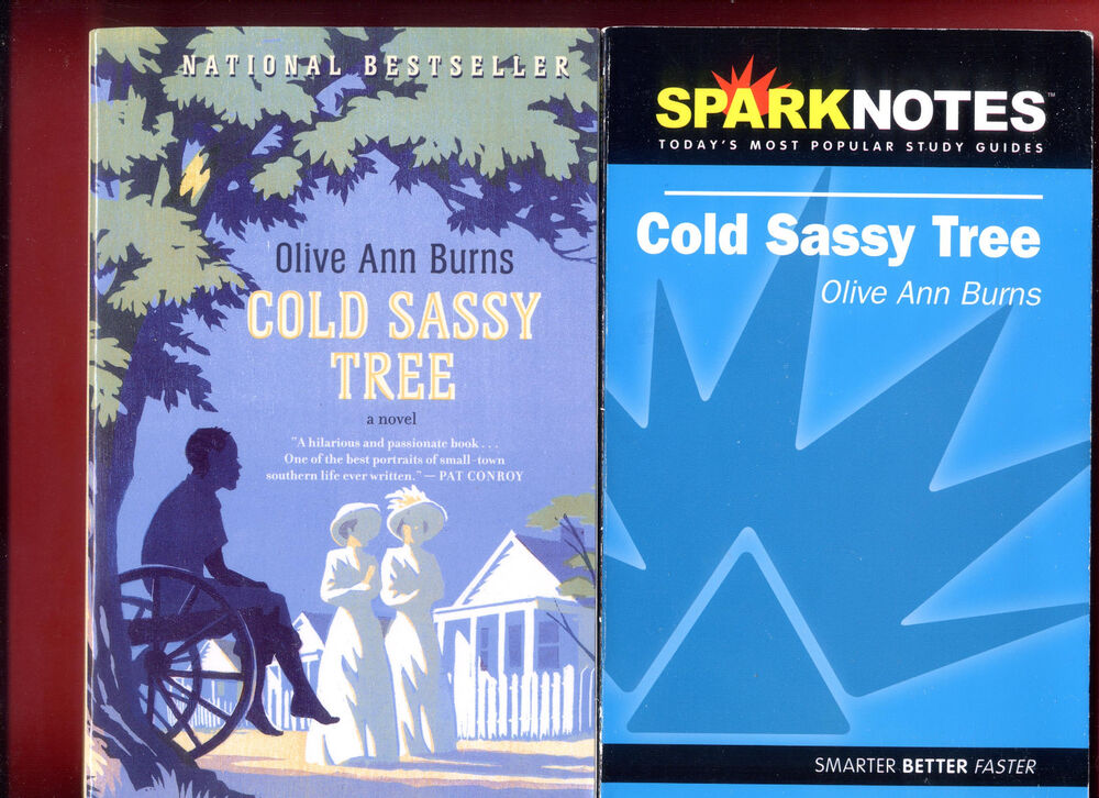 a literary analysis of cold sassy tree by olive ann burns Cold sassy tree is a novel by olive anne burns that was first published in 1984  summary  cold sassy tree (sparknotes literature guide series) buy now.