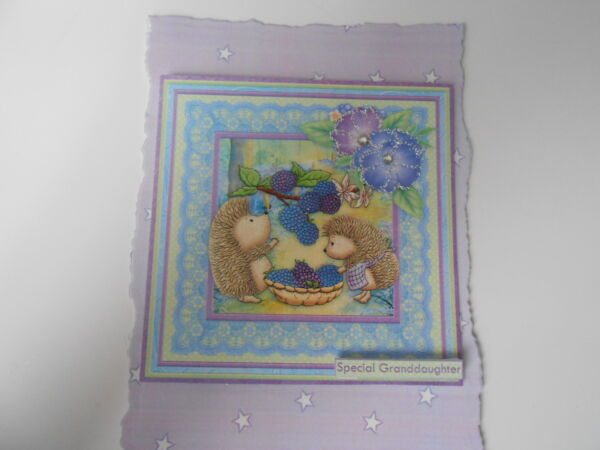 PACK 2 HEDGY BERRY TREATS EMBELLISHMENT TOPPERS FOR CARDS /& CRAFTS