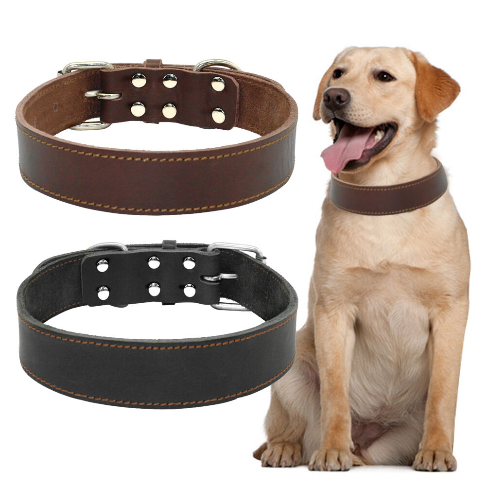 Dog Collar Size Golden Retriever