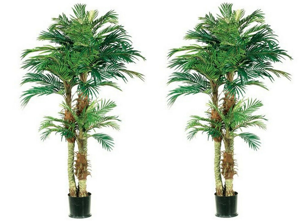 Two 6 foot artificial phoenix triple palm trees plant in for In a garden 26 trees are planted