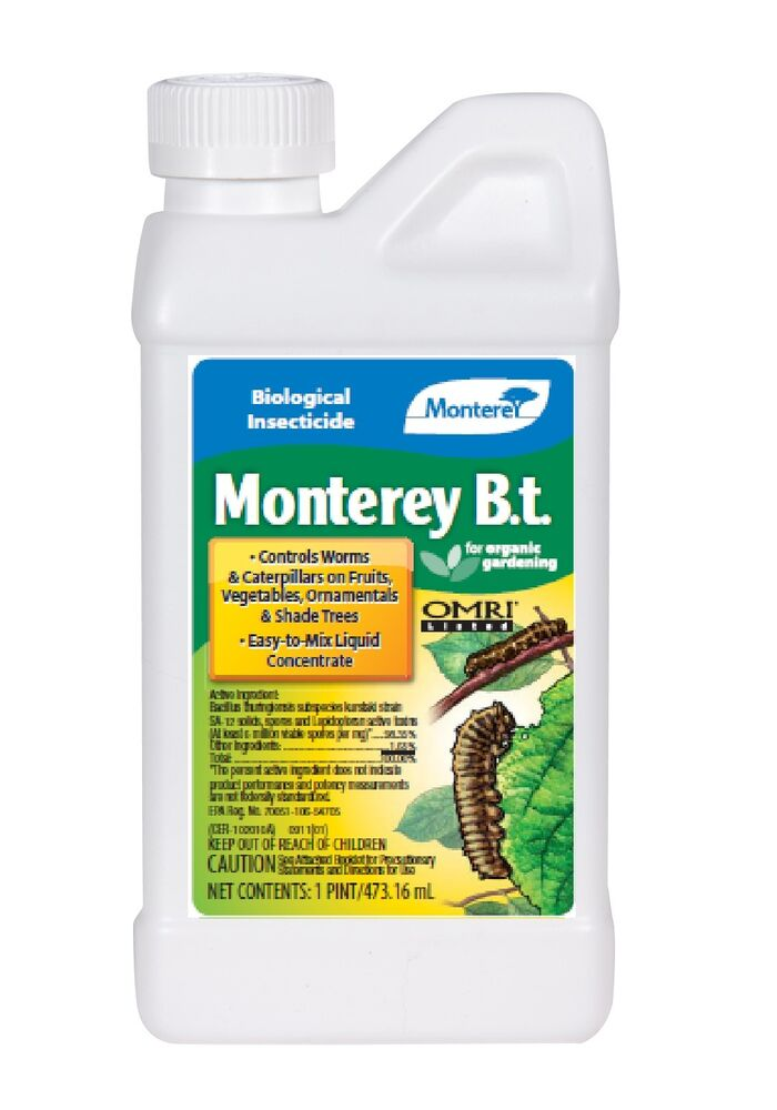Monterey B T Insecticide 1 Pt For Worms Amp Catepillars On