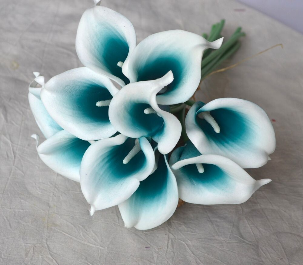 40pcs Teal Picasso Calla Lily Real Touch Flowers For