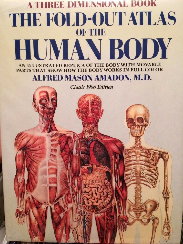 The Fold Out Atlas Of The Human Body Price Reduced Amadon Md