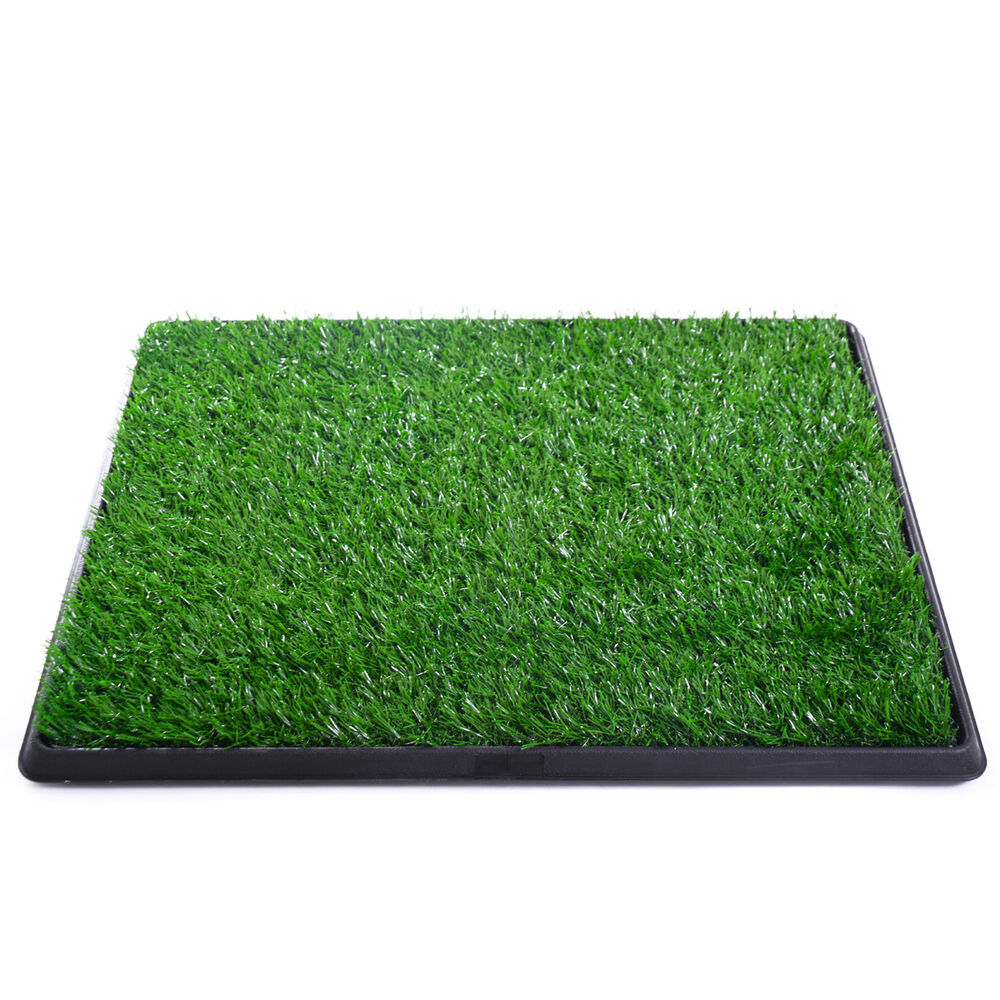 My Dog Peed On My New Rug: Pet Dog Grass Pad Pee Mat Potty Patch Pet Trainer Indoor