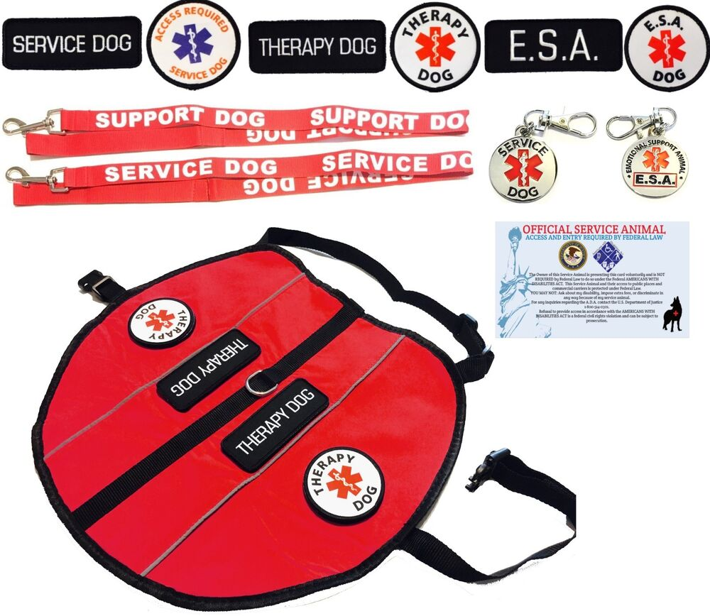 Esa Vest For Small Dog