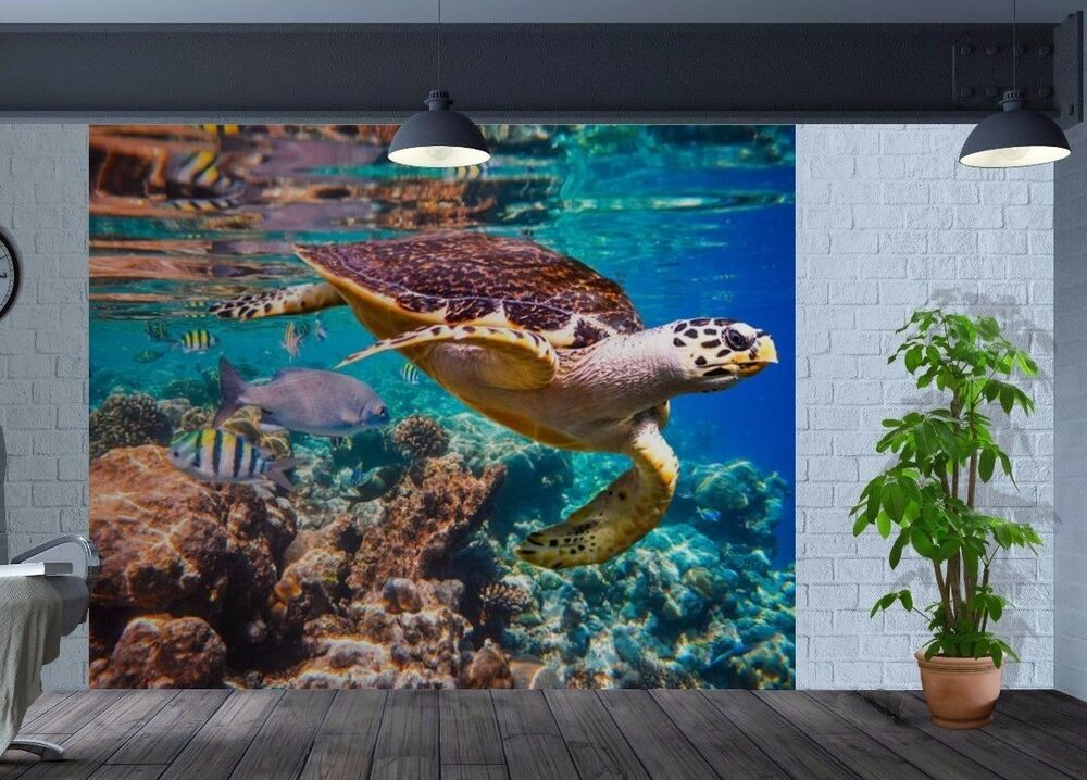 awesome underwater closeup turtle and fish reef wallpaper