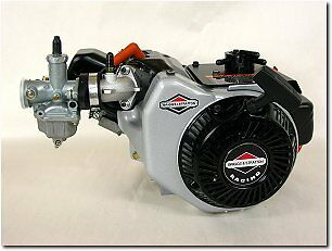 Racing Go Kart Briggs World Formula Engine Motor Ohv