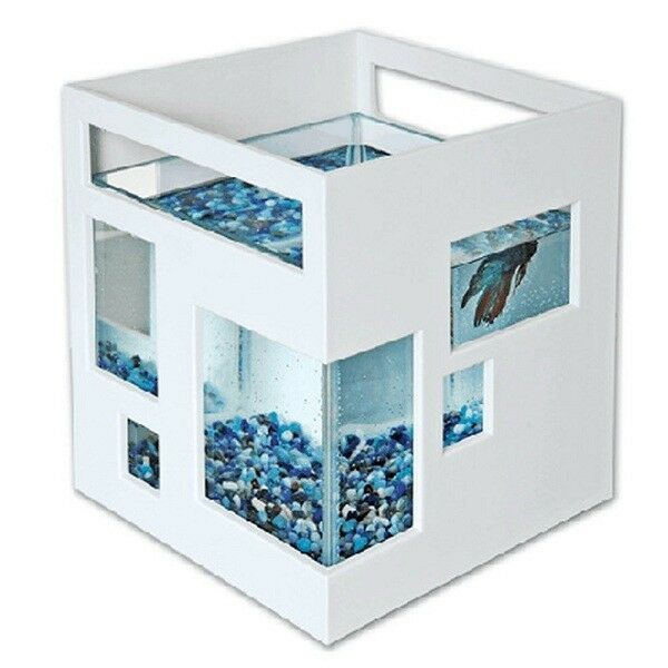Modern aquarium fish tank unique design novelty glass bowl for Fish hotel tank